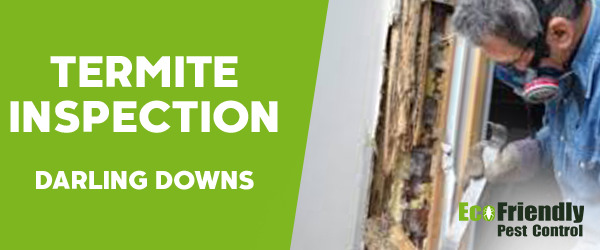 Termite Inspection Darling Downs