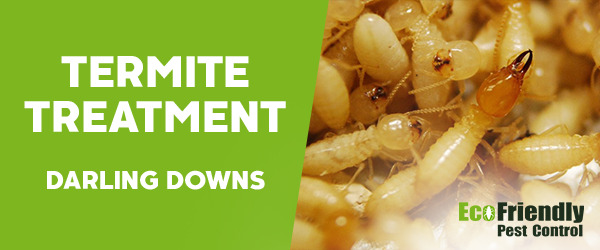 Termite Control Darling Downs