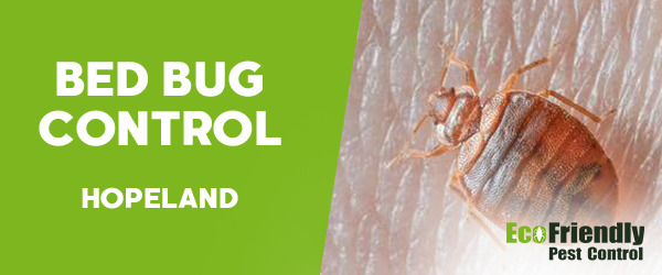 Bed Bug Control  Hopeland