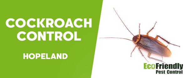 Cockroach Control  Hopeland