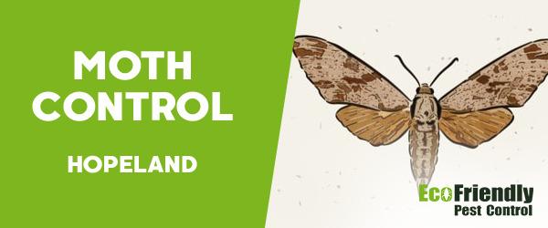 Moth Control  Hopeland