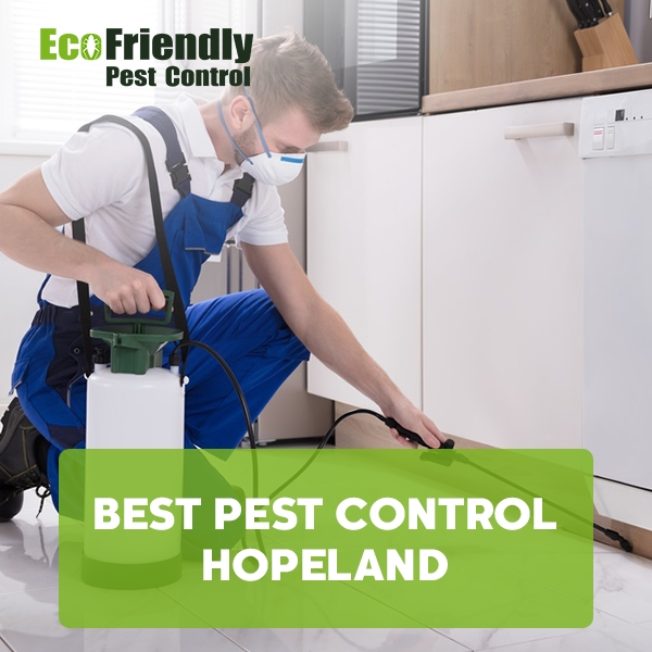 Best Pest Control  Hopeland