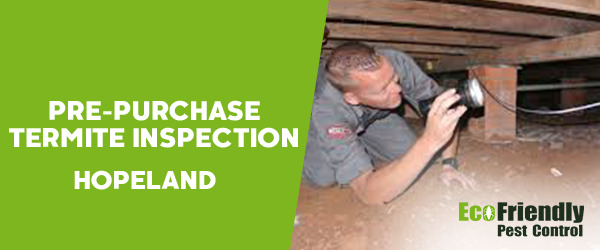 Pre-purchase Termite Inspection  Hopeland