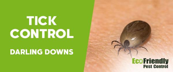 Ticks Control Darling Downs