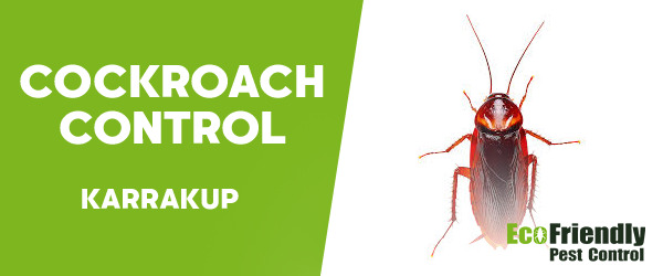Cockroach Control  Karrakup