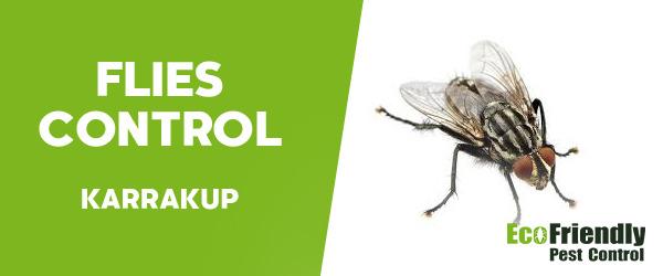 Flies Control  Karrakup