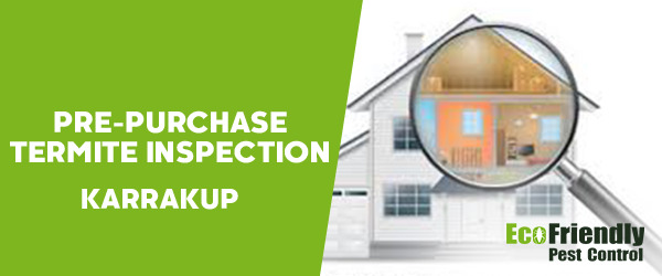 Pre-purchase Termite Inspection  Karrakup