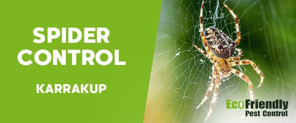 Spider Control  Karrakup