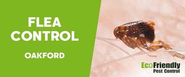 Fleas Control Oakford