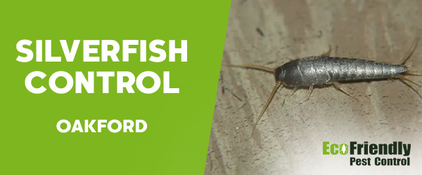 Silverfish Control Oakford
