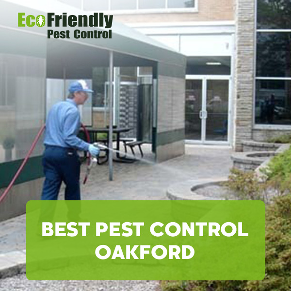 Best Pest Control Oakford
