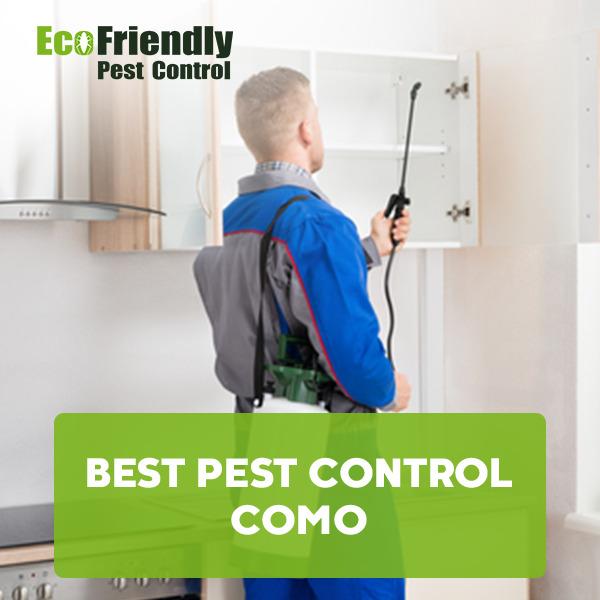 Best Pest Control Como
