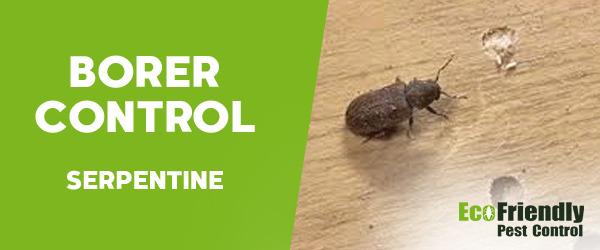 Borer Control Serpentine