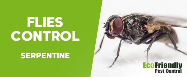 Flies Control Serpentine