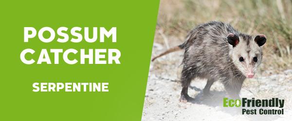Possum Catcher Serpentine