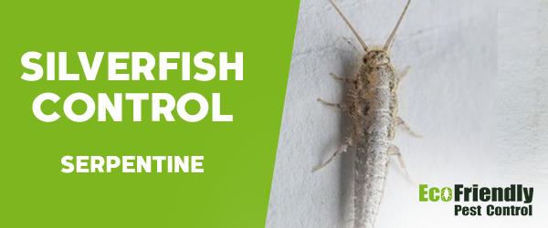 Silverfish Control Serpentine
