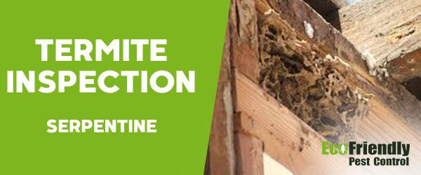 Termite Inspection Serpentine