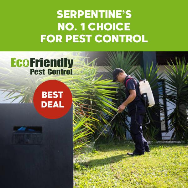 Pest Control Serpentine