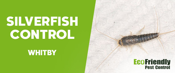 Silverfish Control Whitby