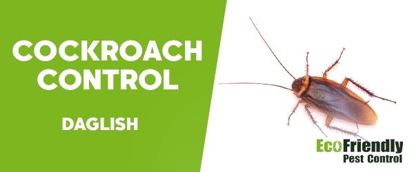 Cockroach Control Daglish