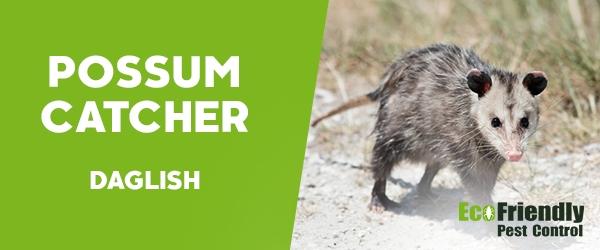 Possum Catcher Daglish