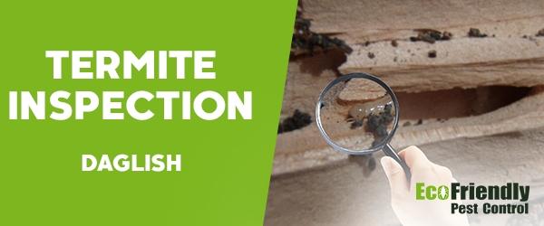Termite Inspection Daglish