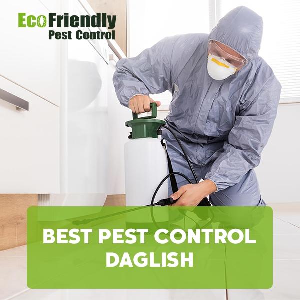 Best Pest Control Daglish