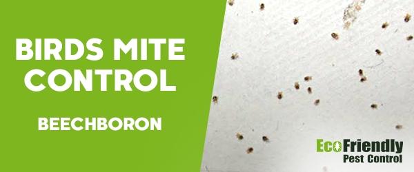 Bird Mite Control Beechboro