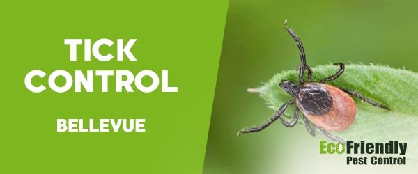Ticks Control Bellevue