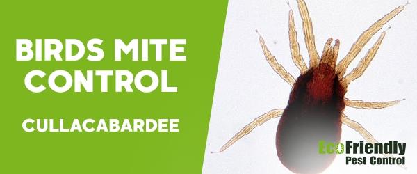 Bird Mite Control Cullacabardee