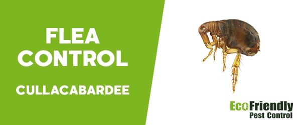 Fleas Control Cullacabardee