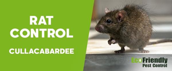 Rat Pest Control Cullacabardee