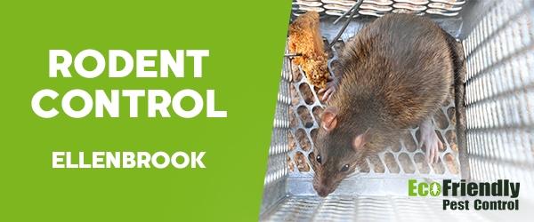 Rodent Treatment Ellenbrook