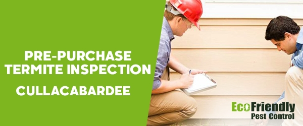 Pre-purchase Termite Inspection Cullacabardee