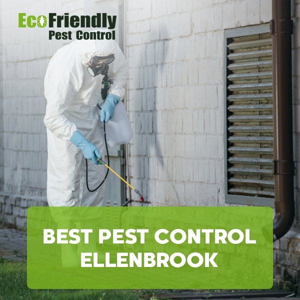 Best Pest Control Ellenbrook