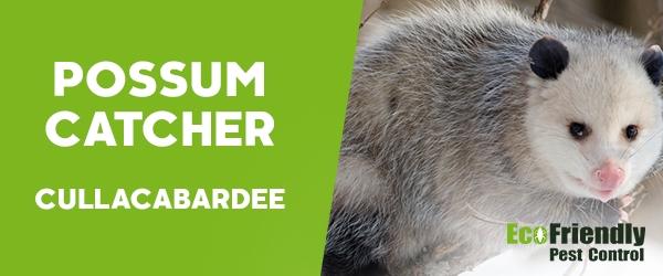 Possum Catcher Cullacabardee