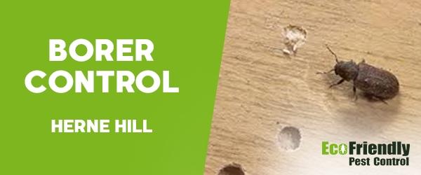 Borer Control Herne Hill