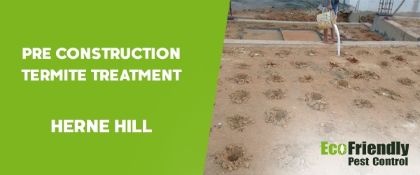 Pre Construction Termite Treatment Herne Hill