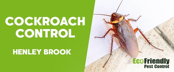 Cockroach Control Henley Brook