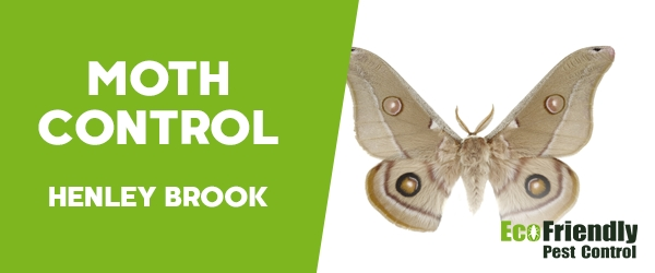 Moth Control Henley Brook
