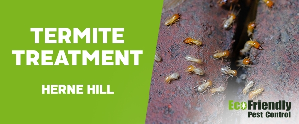 Termite Control Herne Hill