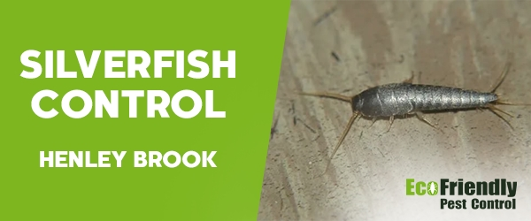 Silverfish Control Henley Brook