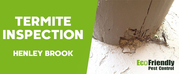 Termite Inspection Henley Brook