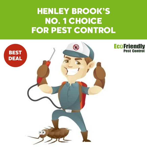 Pest Control Henley Brook