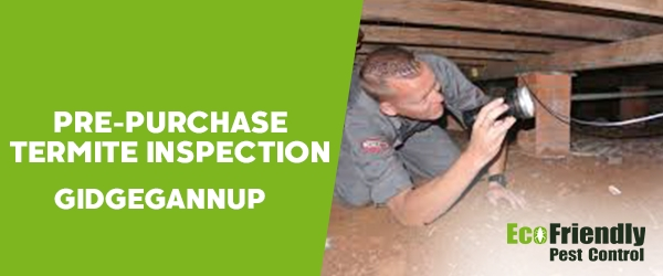 Pre-purchase Termite Inspection  Gidgegannup