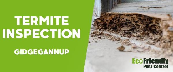 Termite Inspection  Gidgegannup
