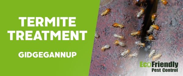 Termite Control  Gidgegannup