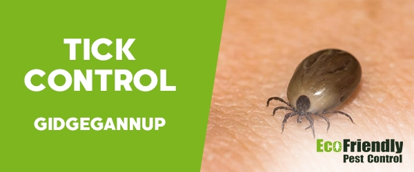Ticks Control  Gidgegannup