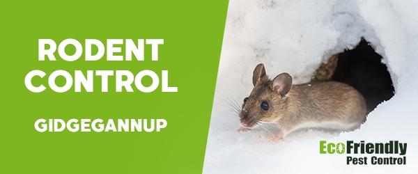 Rodent Treatment  Gidgegannup