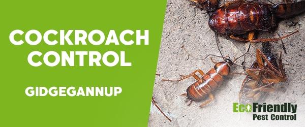 Cockroach Control  Gidgegannup